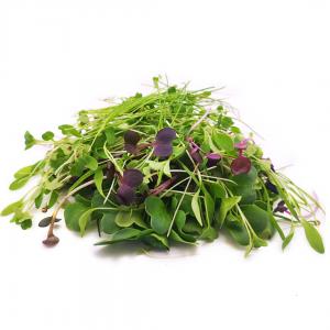 Asian Salad Mix 70g