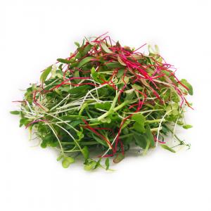 English Salad Mix 70g