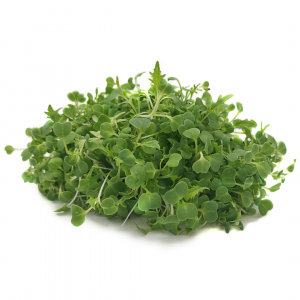 White mustard microgreens 30g